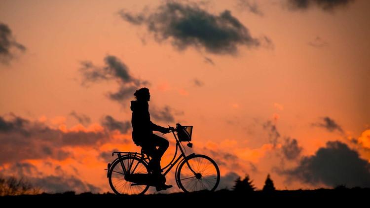 北海道美瑛の丘をレンタル電動アシスト付き自転車で疾走してきました
