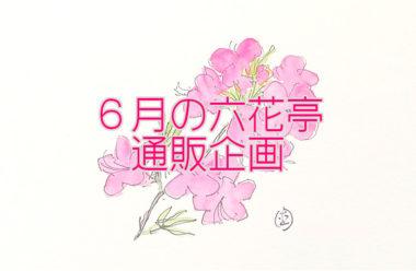 六花亭「通販おやつ屋さん」6月はボリュームアップ、生菓子も新登場