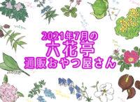 <予告>六花亭通販おやつ屋さん7月の内容【六花ロールが入ります】